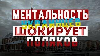 Ментальность Украинцев шокирует Поляков
