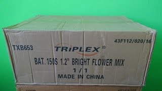TXB653 Bright Flower Show 150 shots Triplex 2016/2017