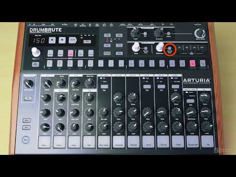 Arturia DrumBrute 101: DrumBrute - Make Beats Now - 11. Randomness