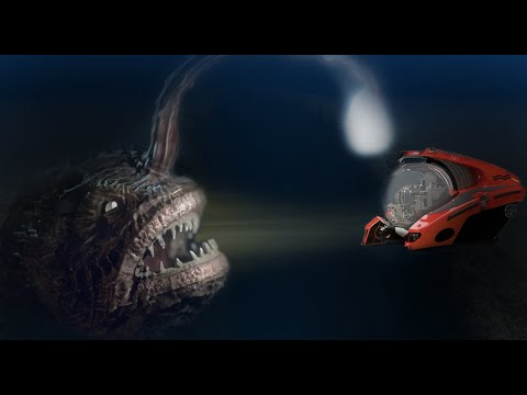 The Amazing Future of Deep Ocean Exploration