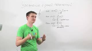 Уравнения с одной переменной. Видеоурок по алгебре за 7 класс.