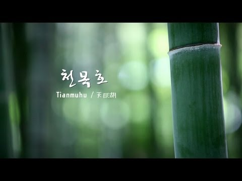 [중국여행] 천목호 남산죽해 / Tianmu Lake Nanshan Bamboo Sea / 하나투어 스티커
