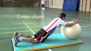 Allongement des bras sur ballon d'exercice