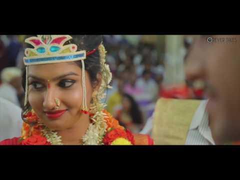 Amol Weds Rashmi - Wedding moments