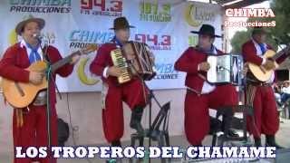 Los Troperos del Chamame   01 03   31 12 14