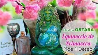Ritual Equinoccio de Primavera - Pide 1 Deseo a Ostara )O(
