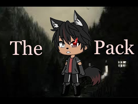 - -The Pack-