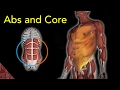 Abs and Core workout at home. For athletes (Especially swimmers)