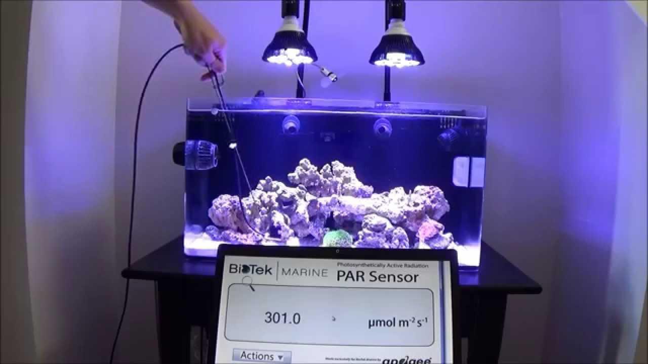 Par38 Led Reef Bulb Photic Youtube