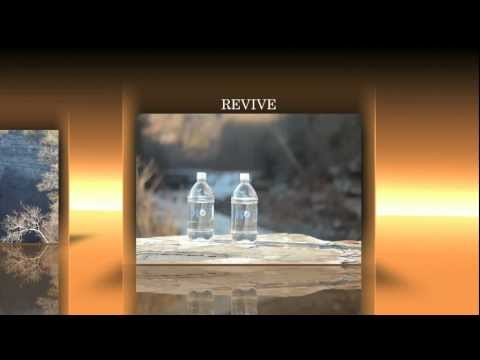 Cerebellum H2O The Ultra Premium All Natural 7.9PH Water
