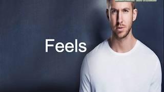 Calvin Harris - Feels (CoverLyric) ft. Pharrell Williams, Katy Perry