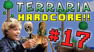 Terraria HC #2! - Part 17 (GOLDEN TICKET!)