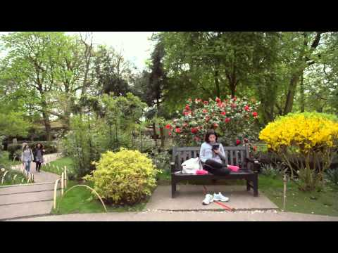 Holland Park (London)
