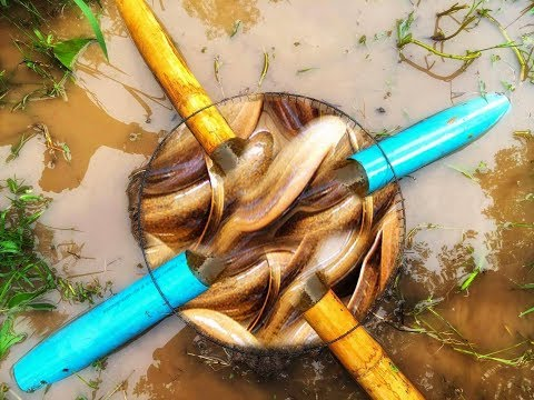 Amazing Deep Hole Eel Trap Using PVC Pipe And Bamboo Make By Smart Boy To Catch A Lot Of Eels