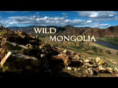Salvaje Mongolia - Los Secretos de la Naturaleza