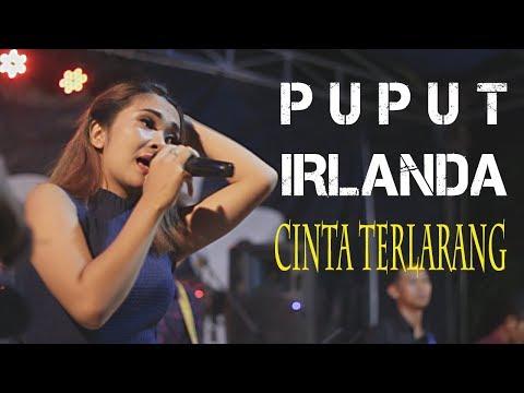 ISTIMEWAHH nya Lagu CINTA TERLARANG jika dibawakan PUPUT TIFFISYA Bareng IRLANDA