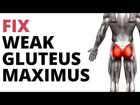 5 Strengthening Exercises For Weak Gluteus Maximus (NO SQUATS!)