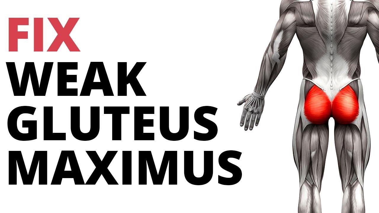 cum să pierdeți greutatea în gluteus maximus
