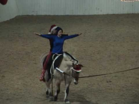 Hesteshow 2016, Julemarked på Buskerud gård