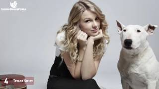 12 Celebrities With Bull Terriers