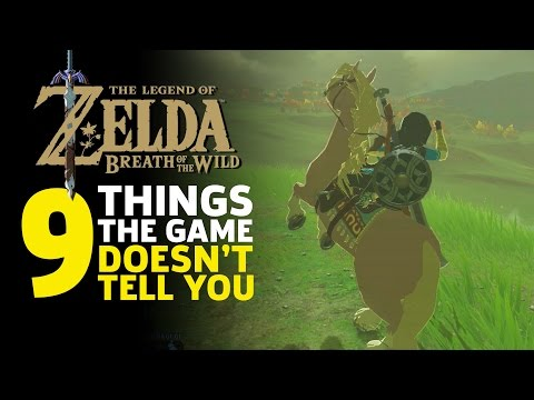 Thumbnail: 9 Things I Wish I Knew Before I Started Zelda: Breath of the Wild