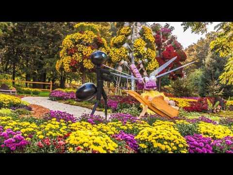 los mas bellos jardines del mundo hd youtube
