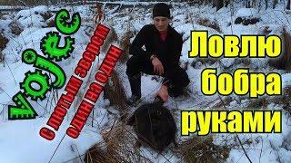Ловля бобра зимой / Охота без капканов