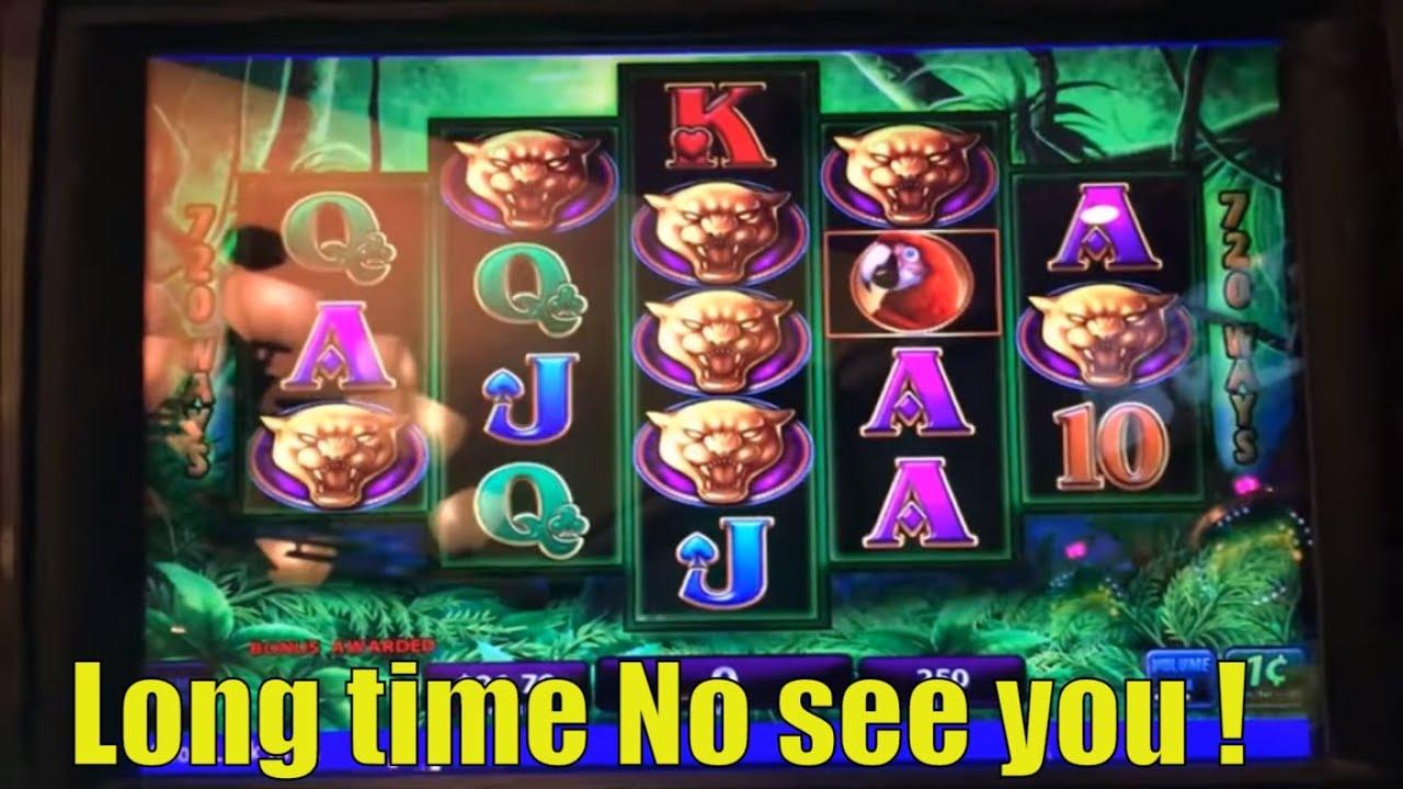 Detective Black Cat Slot Machine