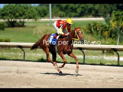 ESPLENDOROSA - Octava Carrera - 5 Febrero...