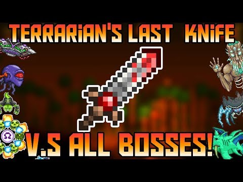 Terrarian's Last Knife V.S All Bosses in Expert Mode! ||Thorium Mod||
