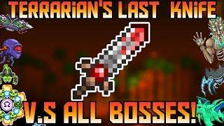 Terrarian's Last Knife V.S All Bosses in Expert Mode! ||Thorium Mod||