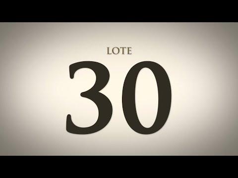 LOTE 30   DANY 353