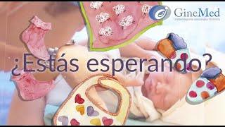 Tu Embarazo - Ginecólogos en Guadalajara