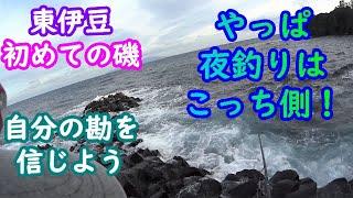 【東伊豆】富戸エリアの初めての磯に挑戦!(夜釣り編)【2020年2月】