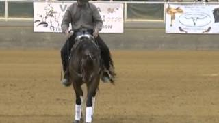 Nathan Morton and Wilde Rooster 2012 VRHA McGee Farms Open Futurity