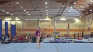 Ekaterina Sokova - Russian Junior Nationals 2015 - FX EF - 14.633