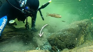 Finding Gold Nuggets while Scuba Diving!
