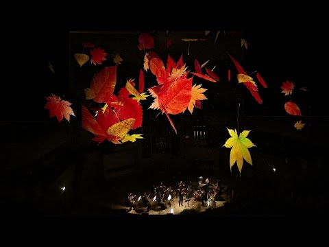 A.Vivaldi. The Four Seasons. Autumn