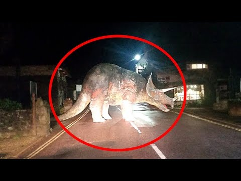 5 Real Life Dinosaurs Caught On Camera