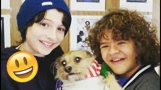 Stranger Things Cast 😊😊😊 - Finn, Millie, Noah and Gaten CUTE AND FUNNY MOMENTS 2017#3