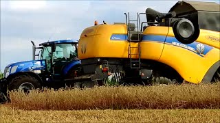 Żniwa 2016 New Holland T7.270 & T4.95 & CX5080