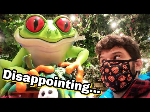 Disappointing Return to Rainforest Cafe...