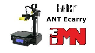 Ant Ecarry 3D Printer Review