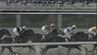 2006年11月1日、園田競馬場で行われた楠賞でロードバクシンが優勝する。最後の直線、ジョイーレとの叩き合いは見ごたえあり。ベテラ...