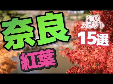 【奈良】奈良県の絶景紅葉スポット♪