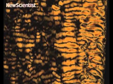 Active bacteria create patterns in liquid crystals