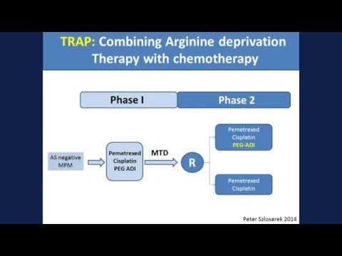 Jan P. Van MeerBeeck, MD, PhD - Mesothelioma Treatment: Are We On Target?
