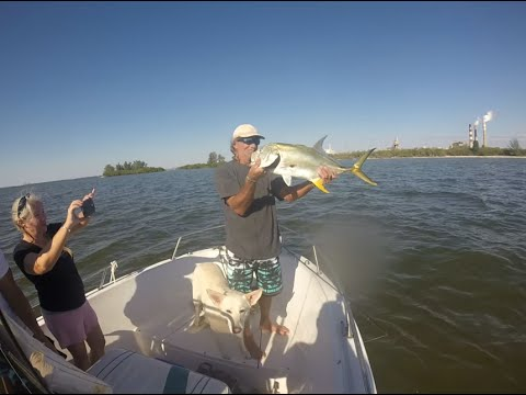 Excellent Fishing Trip On Tampa Bay At The Bahia Reef And Apollo Beach