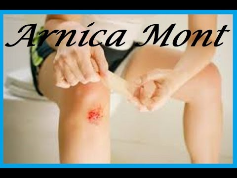 Arnica Montana | Arnica Mont |  Arnica |  Arn  Is The Best Medicine For Practitioner