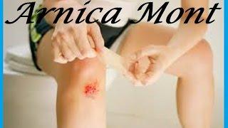 Arnica Montana | Arnica Mont |  Arnica |  Arn  Is The Best Medicine For Practitioner
